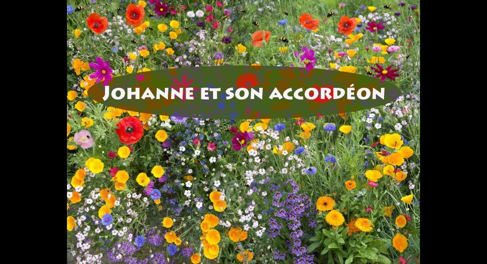 Johanne-et-son-accordéon